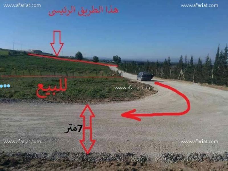 Annonce sur Affariat Tunisie pour: Ardh mezyana 200m²
